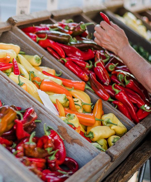 Biologische Lebensmittel aus regionaler Produktion