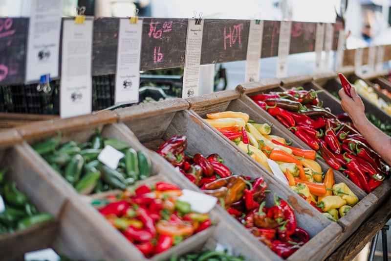 Was zeichnet Bio-Lebensmittel aus?